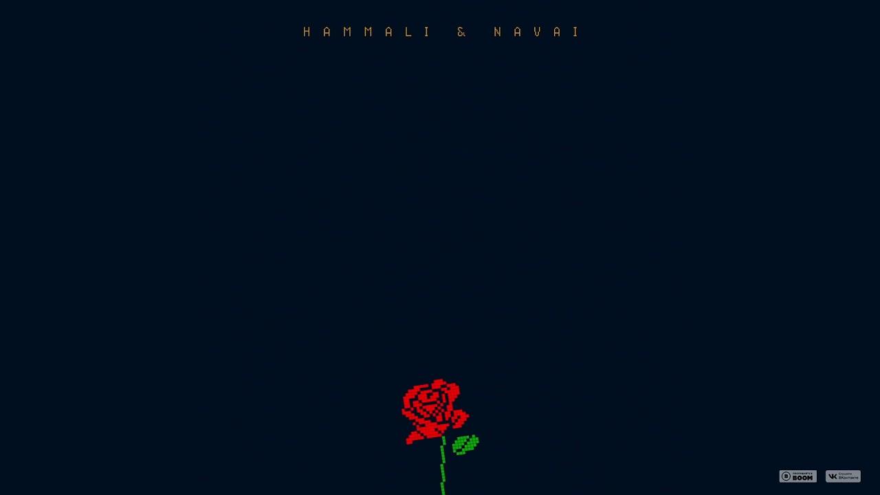 HammAli & Navai — Цветок
