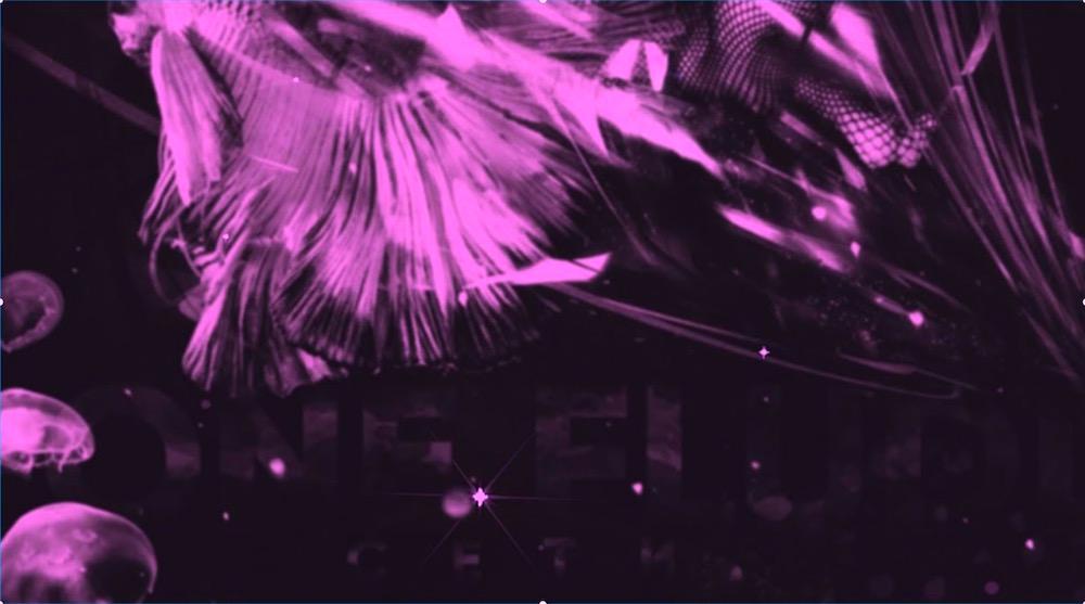 GONE.Fludd — Сети