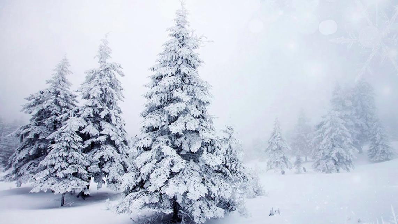 Рем Дигга - Снега не будет